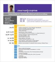 Developer Resume Template Resume