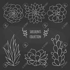 ベクターの花のイラスト黒板に描かれた多肉植物手