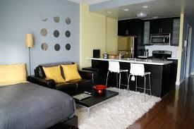 ... 100 ways to set up a studio apartment