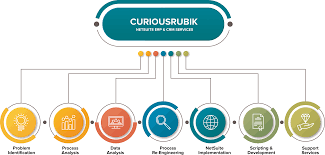 Pin By Curiousrubik On Curiousrubik Netsuite Partners