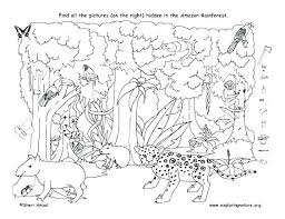 Rain Forest Coloring Pages Trustbanksurinamecom