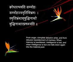 Sanskrit Quote 13 करधतभवत सममह Sanskrit