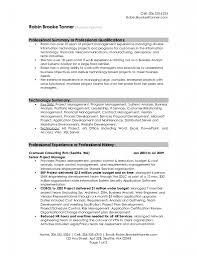 Sample Resume Profile Statement Professional Ideas 2294711 Regarding 87  Enchanting Domainlives.