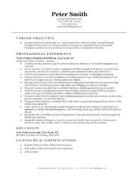 Sample Rn Resume Fascinating Resume Objective Statements For Nursing Assistant Resumes Samples