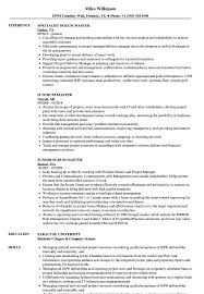 Scrum Master Resume Sample Scrum Resume Samples Velvet Jobs 54