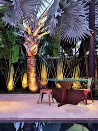 free images plant palm tree flower pot green mediterranean source patio contemporary patio idea in miami