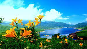 Free Beautiful HD 3d Nature Wallpaper ...