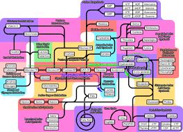 Wikipedia Talk Wikiproject Molecular Biology Metabolic