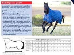 Horse Blanket Size Chart Agentsofurbanism Com