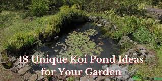 unique koi pond ideas for your garden