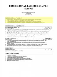 Charming What To Put In A Resume Profile Images Example Resume