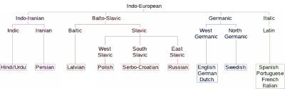 Languages Tree Chart Indo European Languages Essential Humanities