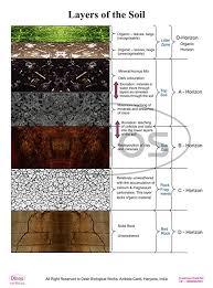 Amazon Com Dbios Digitally Printed Layers Of The Soil