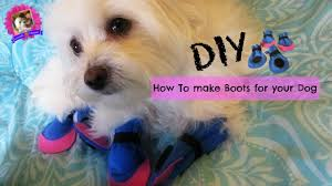 how to make boots for dogs diy no sewing coton de tulear i loix