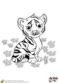 Coloriage Bebe Tigre Sur Hugolescargot Com