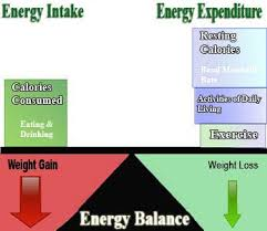 know simple fat loss science caloric balance