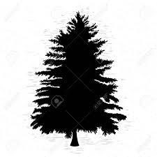 白いモミの木はテクスチャ背景イラストです黒い球果を結ぶ木のシルエット手描き