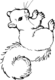 Coloring Page Squirrel Kids N Fun