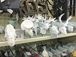 animal hardware hobby lobby