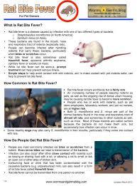 Rat Bite Fever Info Sheet Worms Germs Blog