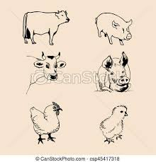 Vector Set Of Farm Animals Hand Sketched Illustrations With Pig Cow And Chicken For Meat Products Logo Eco Food Sign