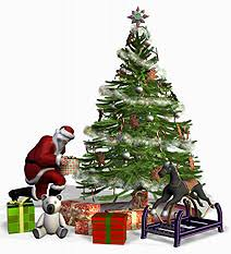 POLL What Type Of Decorations Do You Prefer On A Christmas TreeWhat Kind Of Christmas Trees Are There