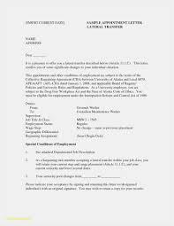 Resume Curriculum Vitae Elegant 21 Federal Resume Format