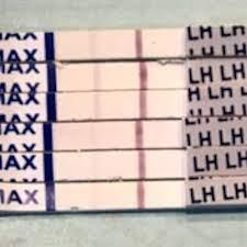ドクターズチョイス 排卵検査薬 ブログ