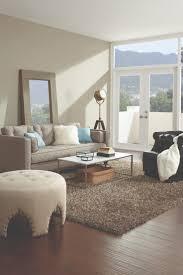 houzz area rugs. Uncategorized:Bedroom Area Rugs Houzz Rug Placement Pictures Arrangement Ideas Arrangements For Small Rooms App U