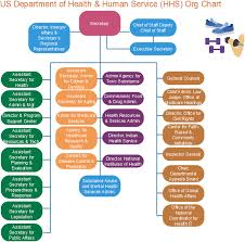 example of org hhs org chart us department of health human service org charting