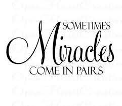 Twin Quotes Fascinating Sometimes Miracles Come In Pairs Vinyl Wall Decal Twin Baby