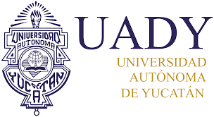 Image result for uady logo