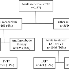 Flowchart Of Patients With Acute Ischemic Stroke By