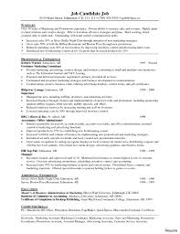 Wonderful It Consultant Resume Example Independent Examples Pre