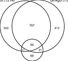 Angiosperm Vs Gymnosperm Venn Diagram Venn Diagram Depicting The Numbers Of Shared And Unique Edit Sites