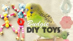 how to make budgie toys diy toys under 10
