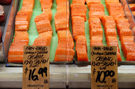 what you need to know about farm raised vs wild caught fish