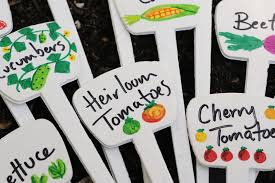 ilrated plant markers for the vegetable garden