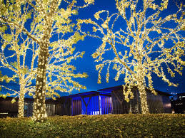 Park Row Lighting Arlington Texas Most Spectacular Christmas Light Displays Around Fort Worth