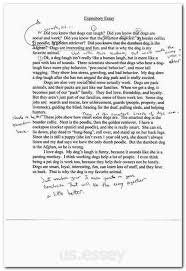 Type A Essay Essay For Master Degree Application Conclusion Of Abortion Essay