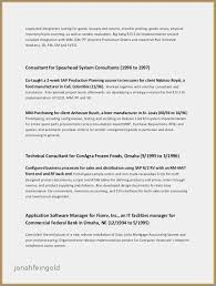 Sales Manager Resume Templates Impressive Retail Sales Manager Resume Luxury Store Manager Resume Examples