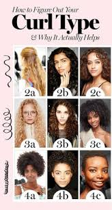 57 Best Hair Type Chart Images Hair Type Chart Hair Type