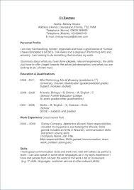 Personal Statement Examples Resume How To Write A Personal Statement ...