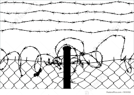 barbed wire fence drawing. Interesting Fence 1300x926 Wired Fence With Barbed Wires Illustration On Wire Drawing O