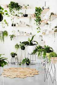 99 Great Ideas to display Houseplants | Indoor Plants Decoration ...