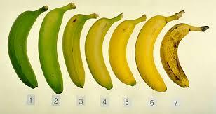 Resultado de imagen de etileno hormona vegetal