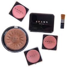 shany carry all trunk makeup set eye shadow palette blushes powder nail