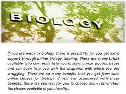 algebra help online elementary algebra help algebra help solver  benefits of online biology classes