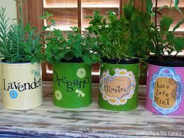 indoor herb garden ideas kwfa