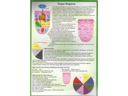 Tongue Diagnosis A4 Chart